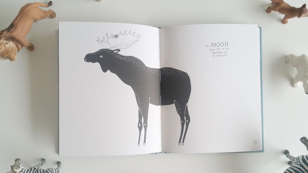 Moose rs