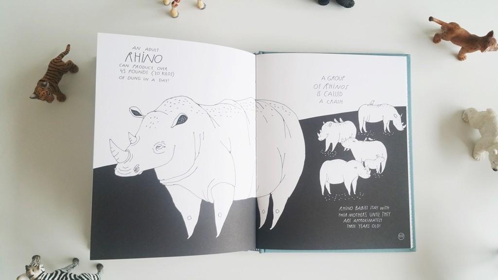 Rhino rs
