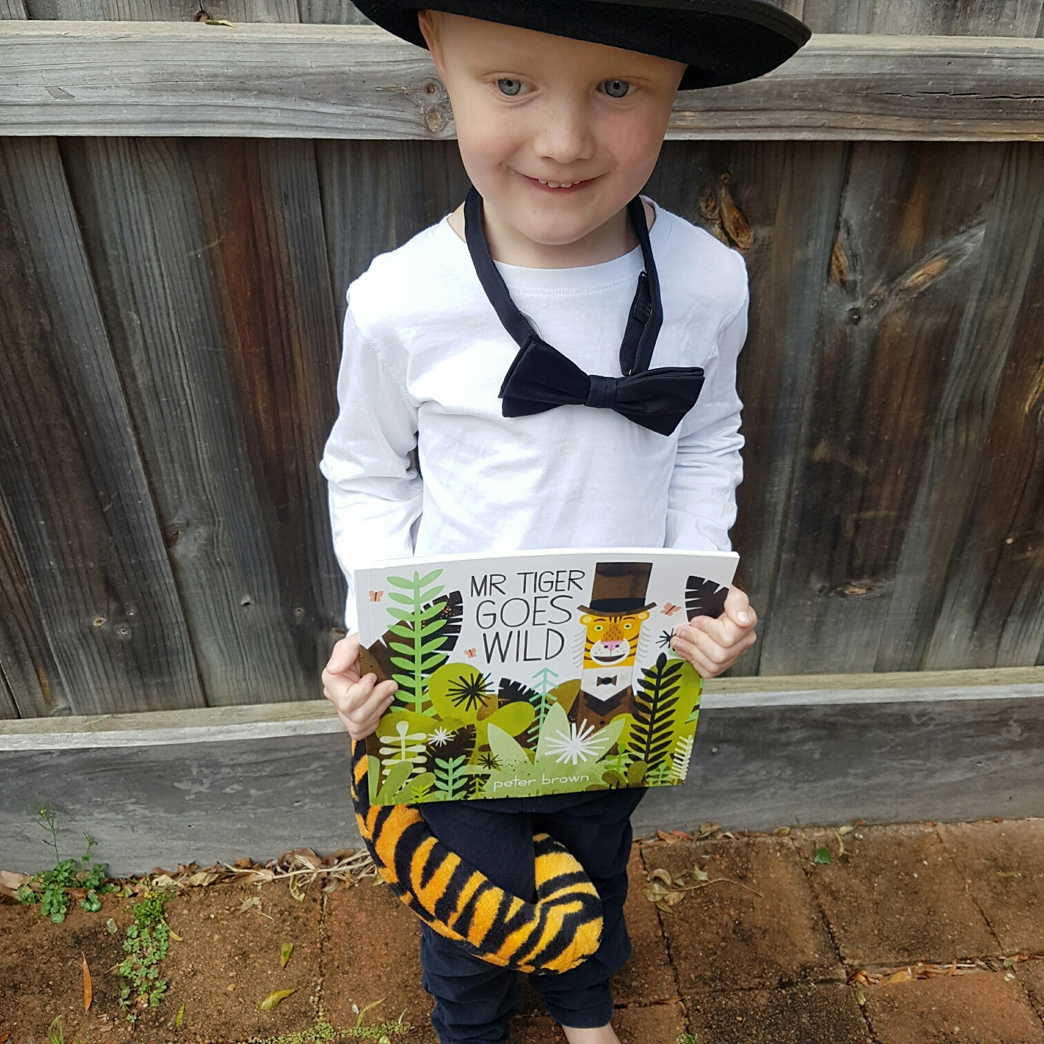CBCA Book Week costume